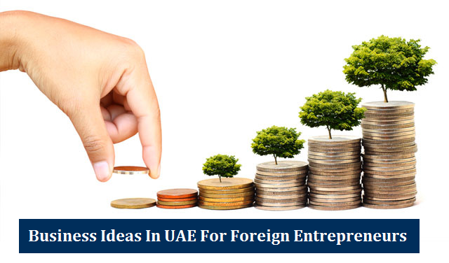 Business Ideas UAE Foreign Entrepreneurs