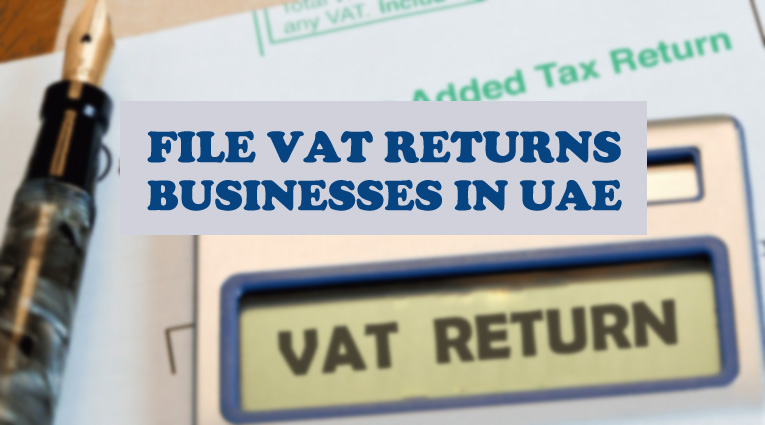 File VAT returns for businesses in uae
