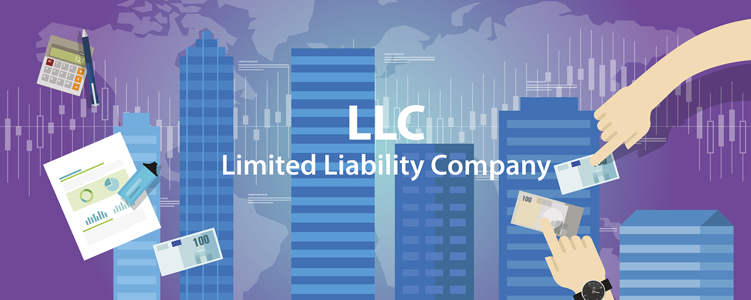Limited Liability Company Formation