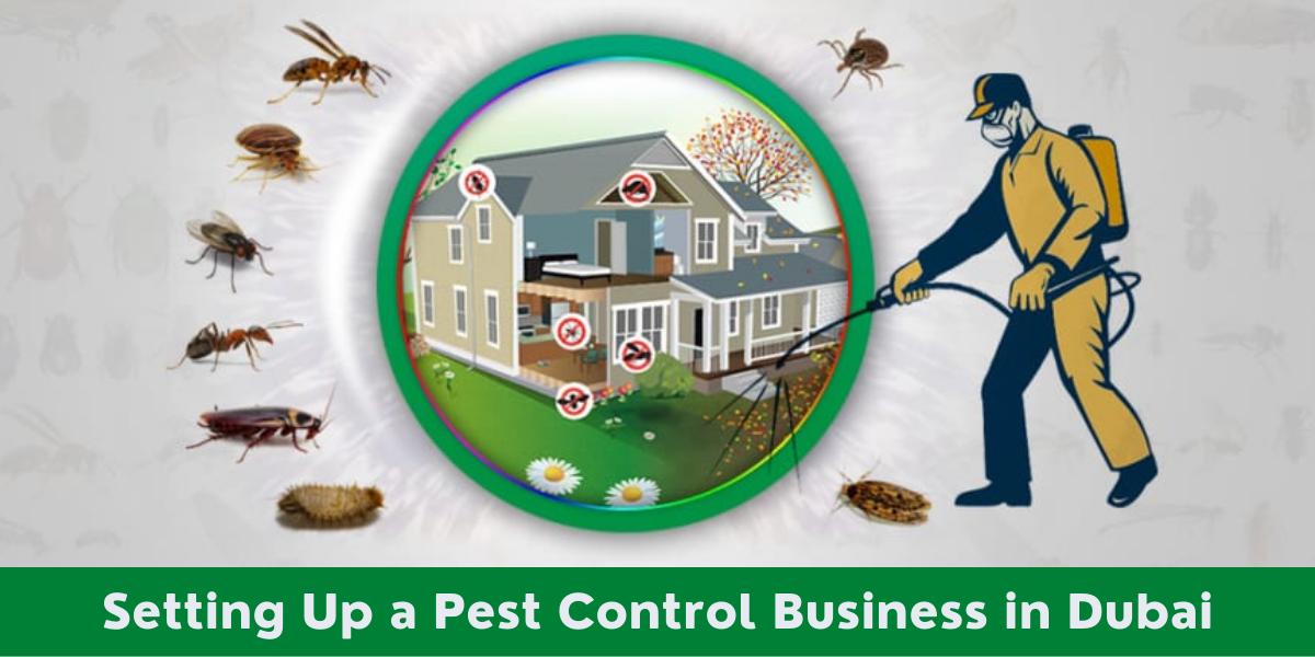 Pest Control Business in Dubai